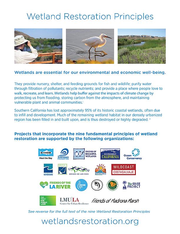 Wetlands Restoration Principles Flyer - page 1